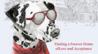 Meet Author Connie Bombaci - and her dog!  Family Event