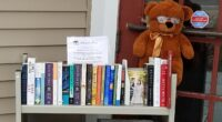 """Browse Our """"Little Free Library"""" While Returning Your Books/DVDs"""